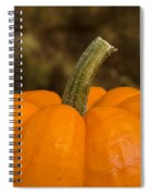 Pumpkin Macro 4 A Spiral Notebook