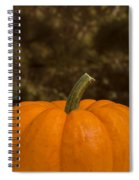 Pumpkin Macro 4 B Spiral Notebook