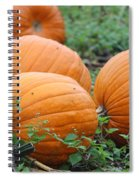 Pumpkin Pie Spiral Notebook