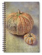Pumpkin Textures Spiral Notebook