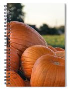 Pumpkins Spiral Notebook