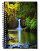 Punchbowl Falls Spiral Notebook