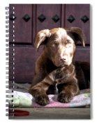 Pup Spiral Notebook