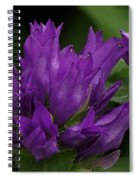 Puple Passion Spiral Notebook