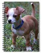 Puppy 2 Spiral Notebook