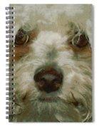 Puppy Eyes Spiral Notebook