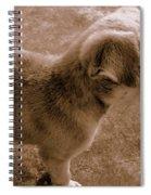Cute Puppy Spiral Notebook