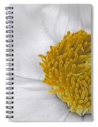 Pure And A Heart Of Gold Spiral Notebook