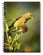 Pure Gold  Spiral Notebook