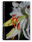 Pure Lily Spiral Notebook
