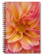 Pure Pastels Spiral Notebook