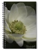 Pureness In White Spiral Notebook