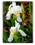 Purity In Pairs Spiral Notebook