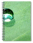 Purity Of Nature Spiral Notebook