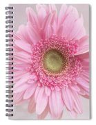 Purity Of The Heart Spiral Notebook