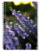 Purple 29987 Spiral Notebook