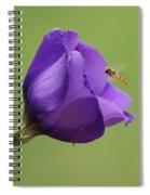 Purple 4 Spiral Notebook