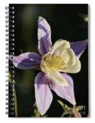 Purple And Cream Columbine Flower Spiral Notebook
