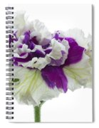 Purple And White Frilly Petunia Spiral Notebook