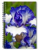 Purple And White Iris Spiral Notebook