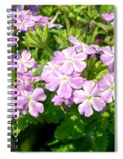 Purple And White Phlox Spiral Notebook