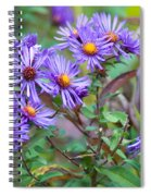 Purple Asters Spiral Notebook