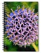 Purple Ball Spiral Notebook