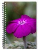 Purple Beauty Spiral Notebook