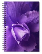 Purple Begonia Flower Spiral Notebook