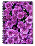 Purple Blanket Spiral Notebook