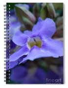 Purple Bokeh Spiral Notebook