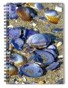 Purple Clam Shells On A Beach Spiral Notebook
