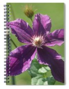 Purple Clemaits   # Spiral Notebook