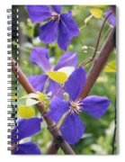 Purple Clematis Clinging On A Fence Spiral Notebook
