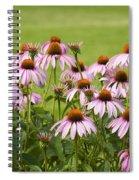 Purple Cone Flowers Spiral Notebook