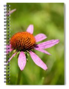 Purple Coneflower 8732 Spiral Notebook
