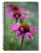 Purple Coneflowers In A Row Spiral Notebook