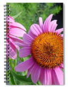Purple Coneflowers Spiral Notebook