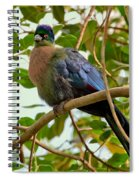 Purple-crested Touraco Spiral Notebook