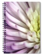 Purple Dahlia Spiral Notebook