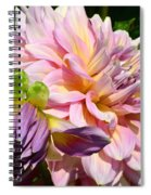 Purple Dahlia With Bud Spiral Notebook