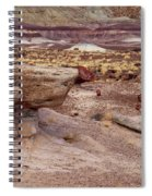 Purple Earth Spiral Notebook