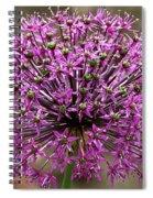 Purple Explosion Spiral Notebook