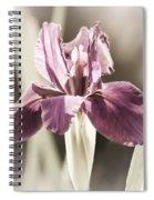 Purple Fairytale Spiral Notebook