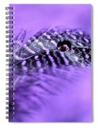 Purple Flight Spiral Notebook
