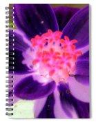 Purple Flower - Photopower 257 Spiral Notebook