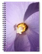 Purple Flower Square Spiral Notebook