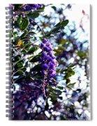 Purple Flowering Tree Spiral Notebook