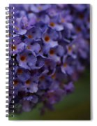 Purple Flowers 1 Spiral Notebook
