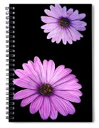 Purple Flowers Spiral Notebook
